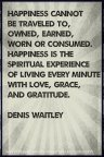 Happiness is the spiritual experience of living every minute with love, grace and gratitude